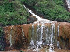 Free Hong Kong tuition agency